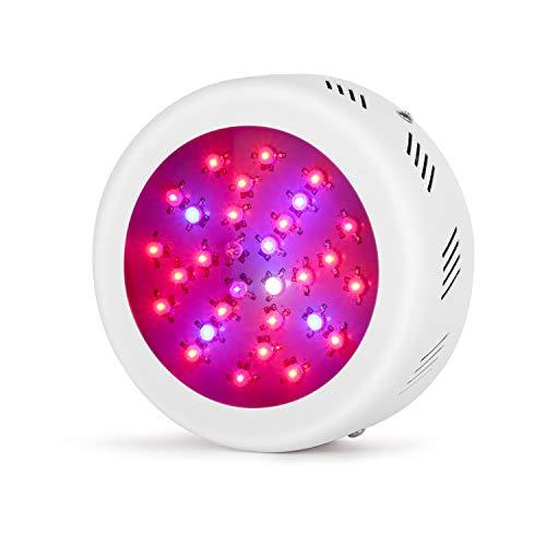 Roledro 300W UFO LED