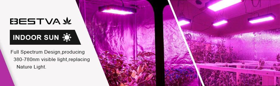 BESTVA 2000W LED Grow Light Review 1