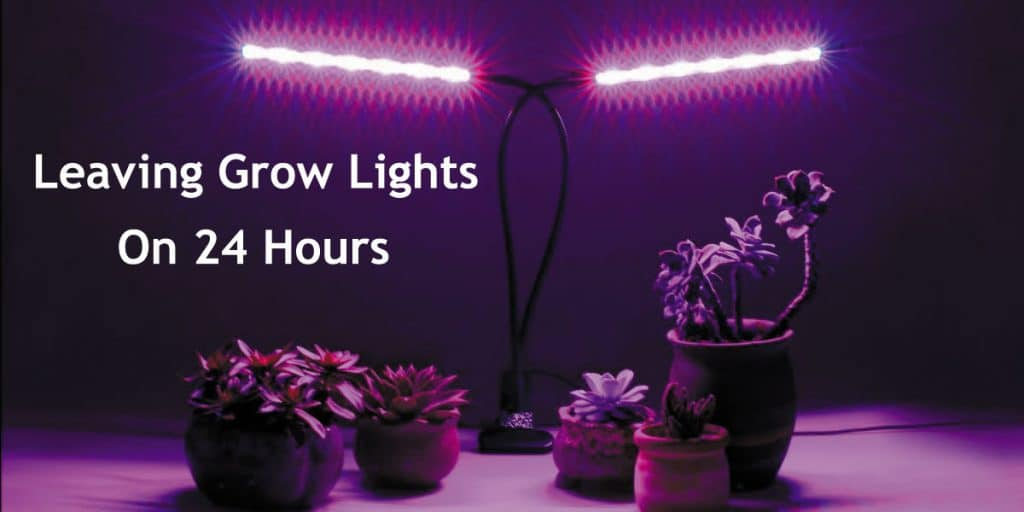 Leaving-Grow-Lights-On-24-Hours