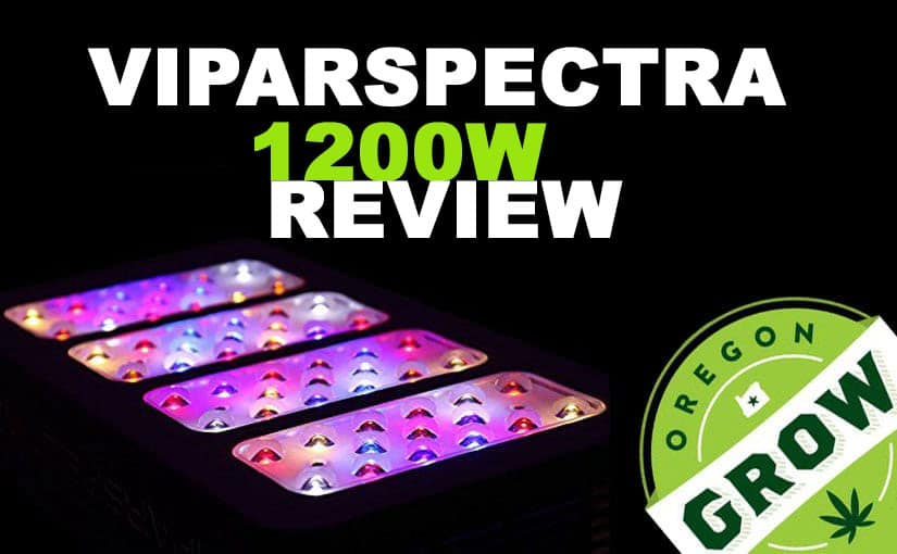 Viparspectra-1200W-Review-and-guide